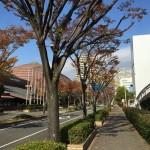 【昨日の練習】12/1(夜)145分jog 25kmくらい + WS 150m×3本!