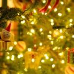 【彼女の練習】12/9 52分夜ジョグ 6.50km!クリスマスプレゼントは「イヤーウォーマー」で決まり!