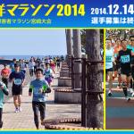 【第28回青島太平洋マラソン2014】猫ひろしさんの結果(ランナーズアップデート)