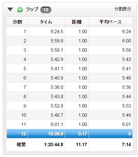 garmin_20141201_01