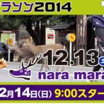 【奈良マラソン2014】大会前日! コースマップ・高低図をしっかり確認。