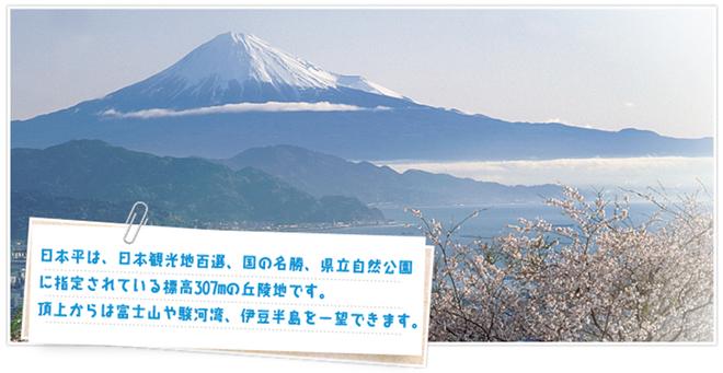 nihondaira_sakura_marathon_20141207_07