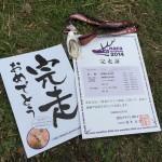 【奈良マラソン2014】速報結果はFacebookページで公開しました!