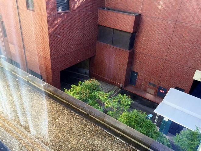 京都第二タワーホテル ツインルーム 外の眺め