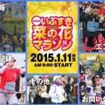 【第34回 いぶすき菜の花マラソン】NTT西日本などによる「いまどこ+」を初採用! GPSの位置情報を共有して効率的な大会運営を。