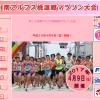 【南アルプス桃源郷マラソン 2017】結果・速報(リザルト)