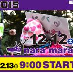 【奈良マラソン 2015】エントリー開始日・宿泊プラン発表