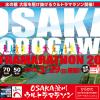 【OSAKA淀川ウルトラマラソン 2015】結果速報はJogNoteで