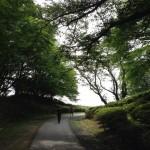 【第4回 森林公園フォレストマラソン】僕の結果