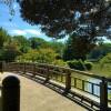 【第7回京都産業大学長距離競技会 2015】結果・順位(リザルト)