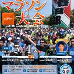 【春日部大凧マラソン 2017】結果・速報(リザルト)