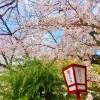 【長野スプリング・トライアル2016(国体県予選)】スタートリスト・タイムテーブル