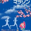 【第27回 はるな梅マラソン 2018】結果・速報(リザルト)