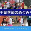 【千葉季節のめぐみマラソン 2018】結果・速報(リザルト)