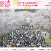 【慶州さくらマラソン&ウォーク 2017】結果・速報(リザルト)