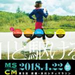 【第5回 前橋・渋川シティマラソン 2018】結果・速報(リザルト)