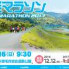 【第3回 宿毛マラソン 2017】結果・速報(リザルト)
