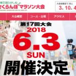 【果樹王国ひがしね さくらんぼマラソン 2018】結果・速報(リザルト)