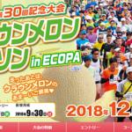 【袋井クラウンメロンマラソン 2018】結果・速報(リザルト)