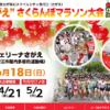 【第41回 さがえさくらんぼマラソン 2017】結果・速報(リザルト)