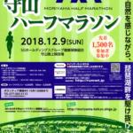 【ほたるのまち守山ハーフマラソン 2018】結果・速報(リザルト)