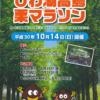 【びわ湖高島栗マラソン 2019】エントリー7月1日開始。結果・速報(リザルト)