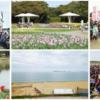 【FM福岡 海の中道はるかぜマラソン 2019】エントリー10月15日開始。結果・速報(リザルト)