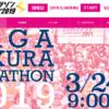 【さが桜マラソン 2019】エントリー10月2日開始。125分で定員締切り