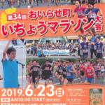 【おいらせ町いちょうマラソン 2019】結果・速報(リザルト)