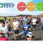 【手賀沼エコマラソン 2019】エントリー6月1日開始。結果・速報(リザルト)